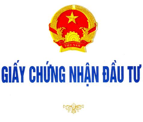 chungnhandautu