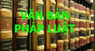một số điều của Luật Phá sản về Quản tài viên