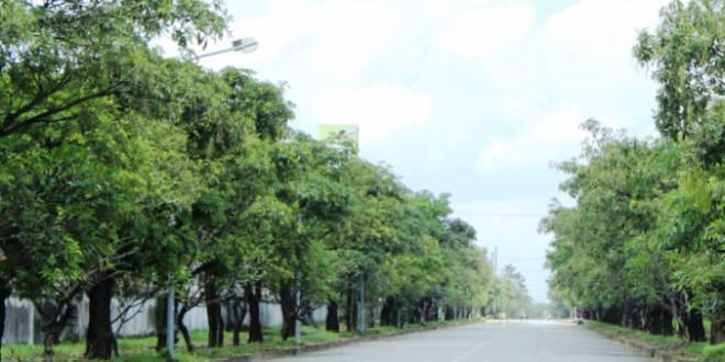 Khu công nghiệp phải có 10% diện tích trồng cây xanh
