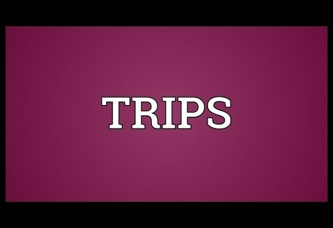 hiep-dinh-trips