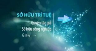 so-hu-tri-tue-1