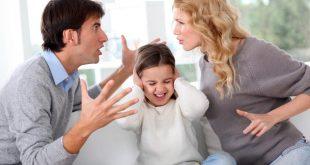 Tranh chấp quyền nuôi con 10 tháng tuổi sau khi ly hôn-internet