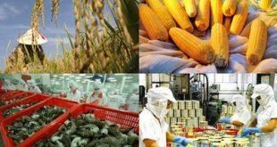 Để xuất khẩu nông sản ra nước ngoài, cần đáp ứng điều kiện gì-sblaw