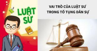 Luật sư tại toà án-5-3-2020-s8-2